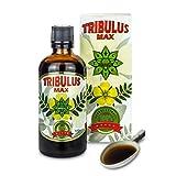 Tribulus Max búlgaro - 100 ml. Extracto de suero - Original Tribulus Terrestris, refuerzo de testosterona, ganancia muscular - Adecuado para vegetarianos y veganos