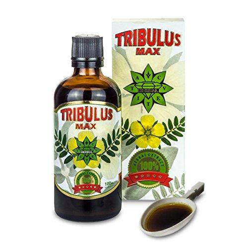 Tribulus Terrestris Bulgare | Bulgarian TRIBULUS MAX | Cvetita Herbal UK - 100 ml liquide | Extrait naturel de Tribulus Terrestris | Améliorez la masse musculaire | Stimulant extrême de testostérone | Augmenter libido