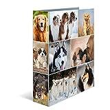 Herma 7165 Karton Motivordner DIN A4, Serie Tiere, Design Hunde, 70 mm breit, 1 Ordner, mit Innendruck