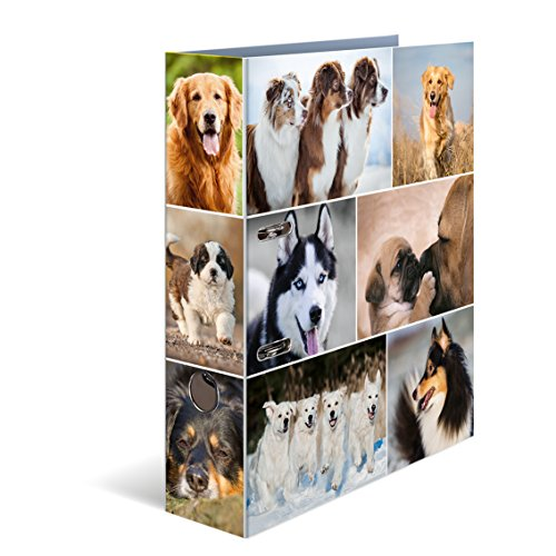 Herma Karton Motivordner DIN A4, Serie Tiere