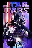 REINDERS Star Wars - Darth Vader Lichtschwert - Poster 61 x 91,5 cm