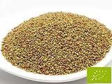 pikantum Bio Alfalfa | 500g | Keimsaat für Sprossen | 99,9% Reinheit | erstklassige Keimfähigkeit