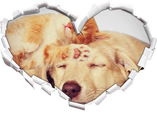 Kätzchen und Welpe schlafen B&W Detail Herz im 3D-Look, Wand- oder Türaufkleber Format: 92x64,5cm, Wandsticker, Wandtattoo, Wanddekoration (Gestreifte Kätzchen)