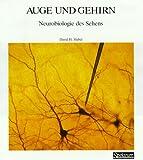 Spektrum-Bibliothek, Bd.20: Auge und Gehirn. Neurobiologie des Sehens