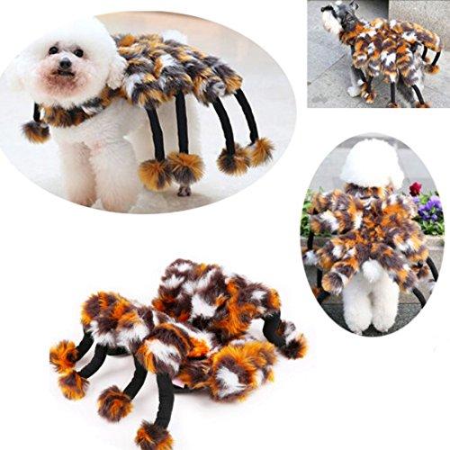 Kungfu Mall Pet Kühle Haustier Katzen Kätzchen Hund Hund Spinne Kleidung Kostüm