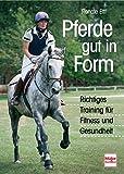 Pferde gut in Form: Richtiges Training für Fitness und Gesundheit