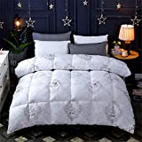 YAN Luxus Duvet Daunendecke Duvet Size 200 * 230cm Winter Warme Daunendecke Klassische Steppdecke Hypoallergen Polyester Cotton Shell Down Proof (Farbe : EIN, Größe : 200 * 230CM)