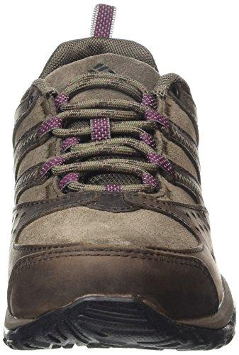 Columbia - Scarpe da escursionismo, Donna Marrone (231)