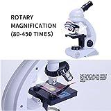 Kinder Mikroskop, Fozela 80x 200x 450x Vergrößerung Wissenschaft Mikroskop Mikroskopie Kit Früherziehung für Schüler und Kinder hergestellt von Fozela