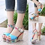 Women Printed Slope Sandals LuckyBB Wedges Platform Toe High-Heeled Shoes