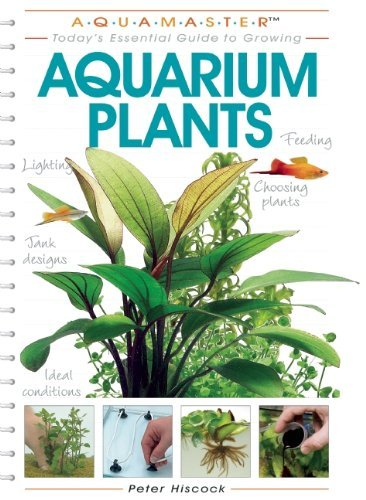 Aquarium Plants (Aquamaster) by Peter Hiscock (2004-07-01)