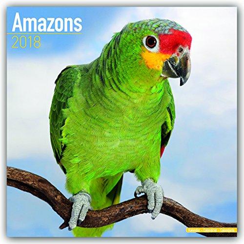 Amazons - Amazonenpapageien 2018: Original Avonside-Kalender [Mehrsprachig] [Kalender] (Wall-Kalender)