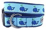 The Worthy Dog Squirt Halsband, blau, S