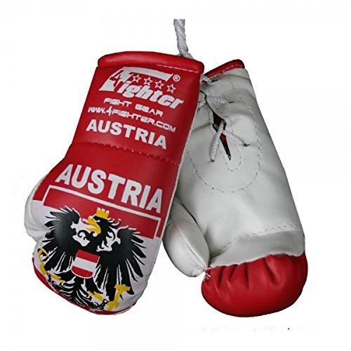 Preisvergleich Produktbild 4Fighter Mini Boxhandschuhe Österreich mit Nationalflagge, Wappen und Austria Schriftzug