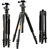 K&F Concept Camera Tripod Lightweight Magnesium Aluminum Alloy Tripod Kit with 4 Sections + 360 Degree Ball Head + 8KG Load Capacity + 1/4