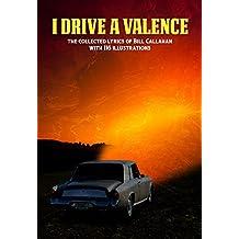 Bill Callahan: I Drive a Valence