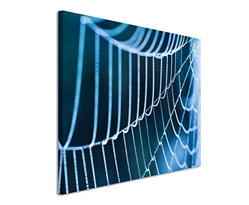 XXL Fotoleinwand 120x80cm Naturfotografie – Spinnweben mit Morgentau auf Leinwand exklusives Wandbild moderne Fotografie für ihre Wand in vielen Größen