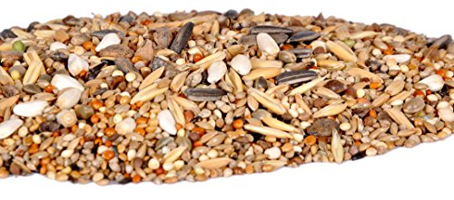 21 Types of Seed Mix for Budgies, Cocktails,Conures,Parrot,Love Birds(500 grms)