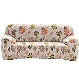 Rrimin Sofa Cover Cloth Art Spandex Stretch Printed Slipcover (2 SeatsStyle # 2)