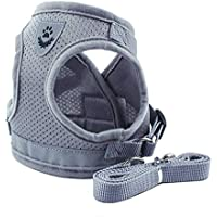 Lorsoul Dog Harness Daily Vest, Training Dog Walking Vest Clothes Puppy Harness Jacket, for Small Meduim Large Dogs - S