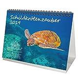 Schildkrötenzauber · DIN A5 · Premium Tischkalender / Kalender 2019 · Schildkröte · Amphibien · Reptilien · Regenwald · Echsen · Schildkröten · Schlangen · Afrika · Indien · Asien · Amerika · Tiere · Wildnis · Natur · Geschenk-Set mit 1 Grußkarte und 1 Weihnachtskarte · Edition Seelenzauber