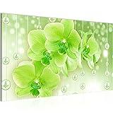 Bilder Blumen Orchidee Wandbild Vlies - Leinwand Bild XXL Format Wandbilder Wohnzimmer Wohnung Deko Kunstdrucke Grün 1 Teilig - MADE IN GERMANY - Fertig zum Aufhängen 208114c