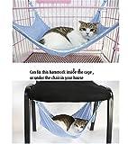 Affe Weiche Katze Kleintiere Hängematte Katzenbett Schlafplatz (S, Blau)
