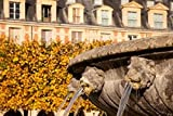 Brian Jannsen / DanitaDelimont – Lion Heads Fountain in Paris France Photo Print (91,44 x 60,96 cm)