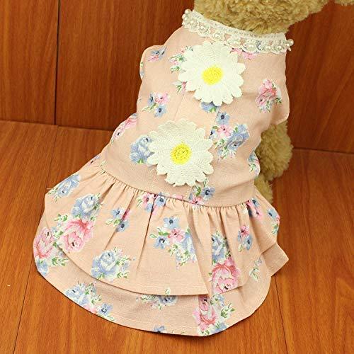 Menran Sommerrock Teddy Kleidung VIP als Bär Kostüm für Kleine Mittelgroße Hunde - Bär Kostüm Für Hunde