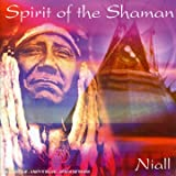 Spirit of The Shaman [Import anglais]