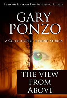 The View from Above (English Edition) par [Ponzo, Gary]