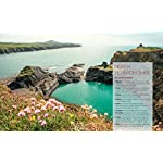Wild Guide Wales and the Marches (Wild Guides) 40