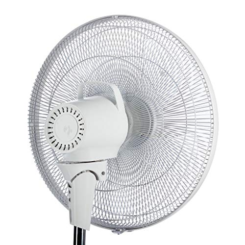 "513VC6tmQzL. SS500  - EcoAir Zephyr 16"" Fan 
