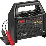 Challenge 6/12 Volt Battery Charger (7404355)