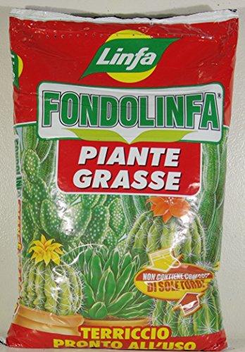 fondolinfa-plantes-grasses-pret-a-lutilisation-terreau-pour-plantes-grasses-et-succulentes-en-lot-de