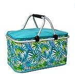 LIQICAI 32L Isolato pieghevole Più fresco Borsa da basket del picnic Sacco per il pranzo Termico Totalizzatore Pranzo al sacco ( Colore : C )