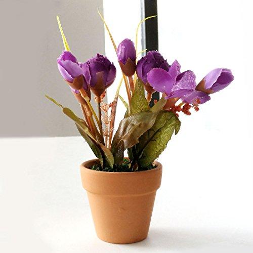 Künstliche Blumen Fake rationalismus-Mini Topfpflanzen (orange, rot, lila zufällige Farbe)
