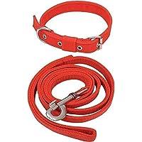 Pet King Dog Neck Collar Belts and Leash Set (Red Color, Waterproof, Medium, Leash Size 1.5M-2M)