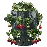 PHYNEDI 2er Pack Erdbeere Pflanzbeutel, 11 Gallonen Pflanztasche mit Griffen, 8 Sichtfenster, Pflanzsack für Erdbeeren, Kräuter, Blumen