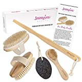 3 x Brush - Dry Body Brushing Set by Snoozing Beauty | SOFT Cleansing Face Brush | MEDIUM and FIRM Body Brushes | Pumice Stone for Dry Skin Foot Care