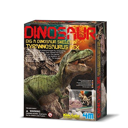 4M - Tyrannosaurus Rex Skeleton (004M3221)