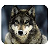 Awesomely Evergreen Fashion Gray Wolf in Snow Customized Mouse Mat/Pad 9.84