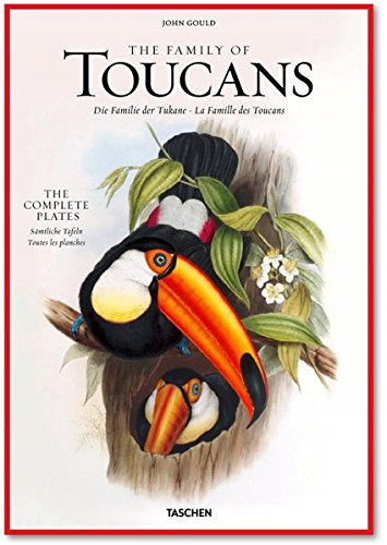 John Gould. The Family of Toucans - John Gould Vogel