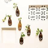 Wonky funktioniert Home Decor Ideen Wanddekoration Garten 6braun chappat Pflanzgefäßen–Set von 6braun