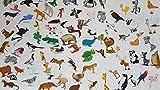 480 x Aufkleber - Tiere Sortenpackung