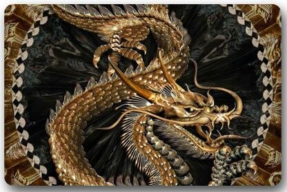Jeroty Non-Woven Fabric 23.6 x 15.7 Inch(W) Machine-Washable Cool Dragon Design,sea Dragons and fire Dragons Art Indoor/Outdoor/Shower/Bathroom Doormat Welcome Doormat