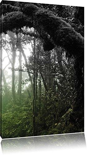 Pracht Gerahmt (Regenwald in seiner ganzen Pracht, Format: 80x120 auf hochkantiges Leinwand, XXL riesige Bilder fertig gerahmt mit Keilrahmen, Kunstdruck auf Wandbild mit Rahmen, günstiger als Gemälde oder Ölbild, kein Poster oder Plakat)