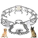 Local Makes A Comeback - Cadena de perro desmontable, cadena de perro de entrenamiento de mascotas, cadena especial de estimulación de perro,25mm × 45 cm