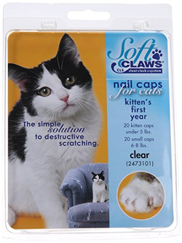 Kit de Protège-Griffes SoftClaws - Chaton - Transparent