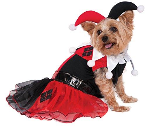 mics Harley Quinn Pet Kostüm, X-Large (Harley Halloween-kostüm)